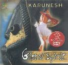 CD Y DVD DIDÁCTICOS | CD MUSICA GLOBAL SPIRIT (KARUNESH)